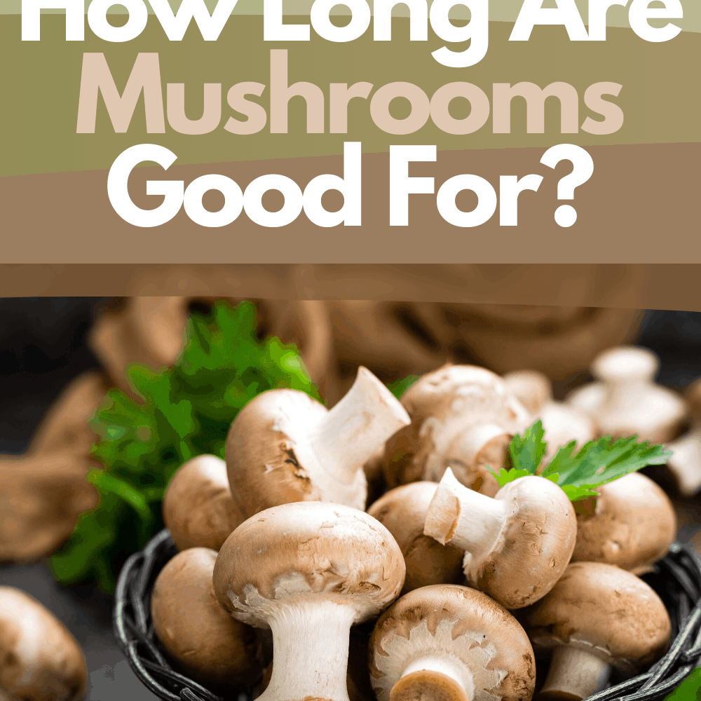 Know How Long Your Mushrooms Are Good For