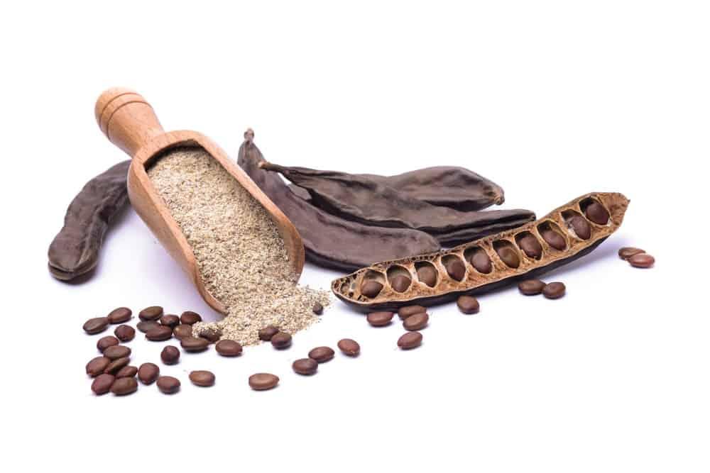 carob-vs-cacao