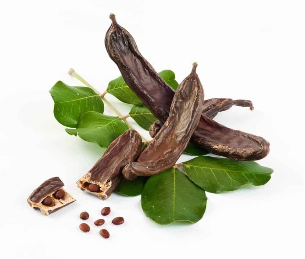 Carob and Carob nuts