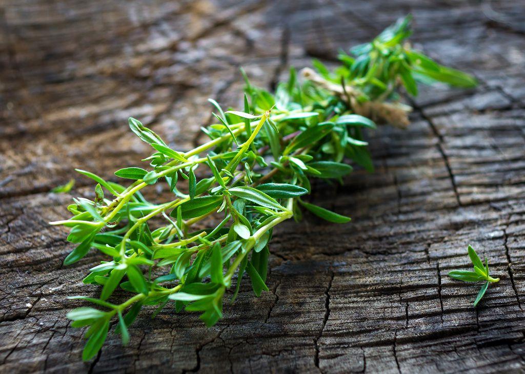 a bunch of fresh summer savory