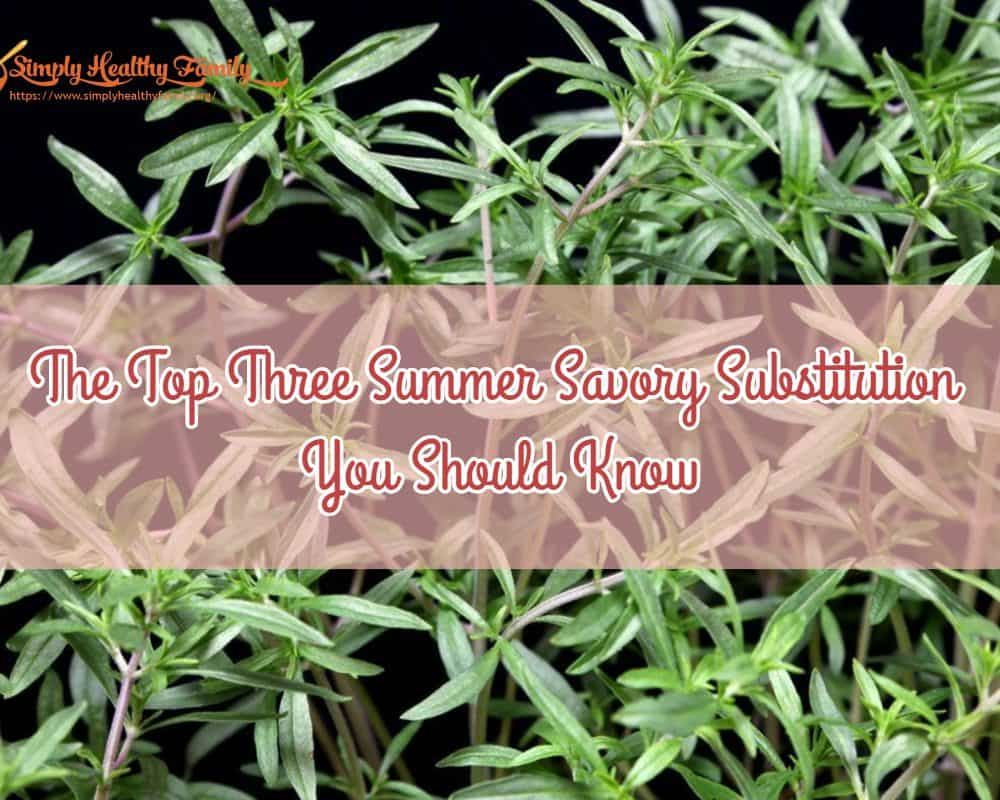 The Top Three Summer Savory Substitution You Should Know