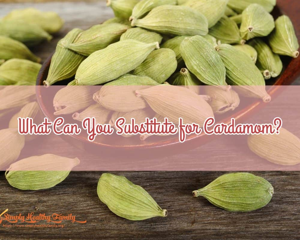4 Cardamom Substitute – What Can You Substitute for Cardamom?