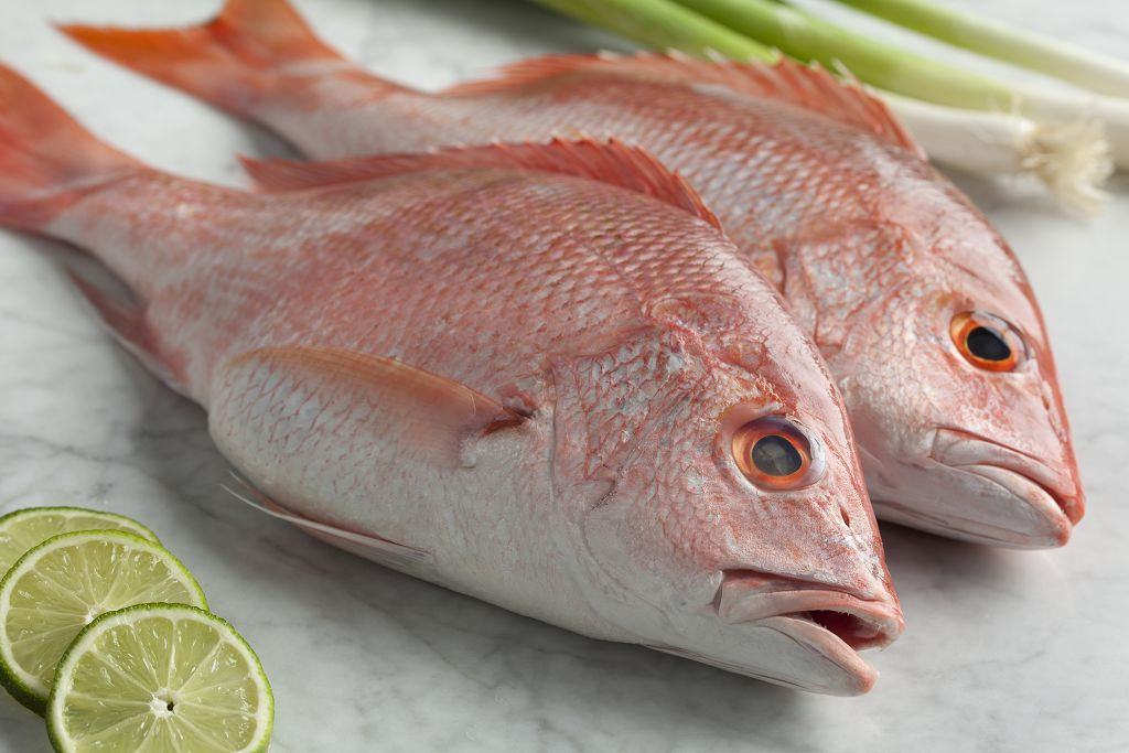 Fresh Snapper, slices of lemon and scallions