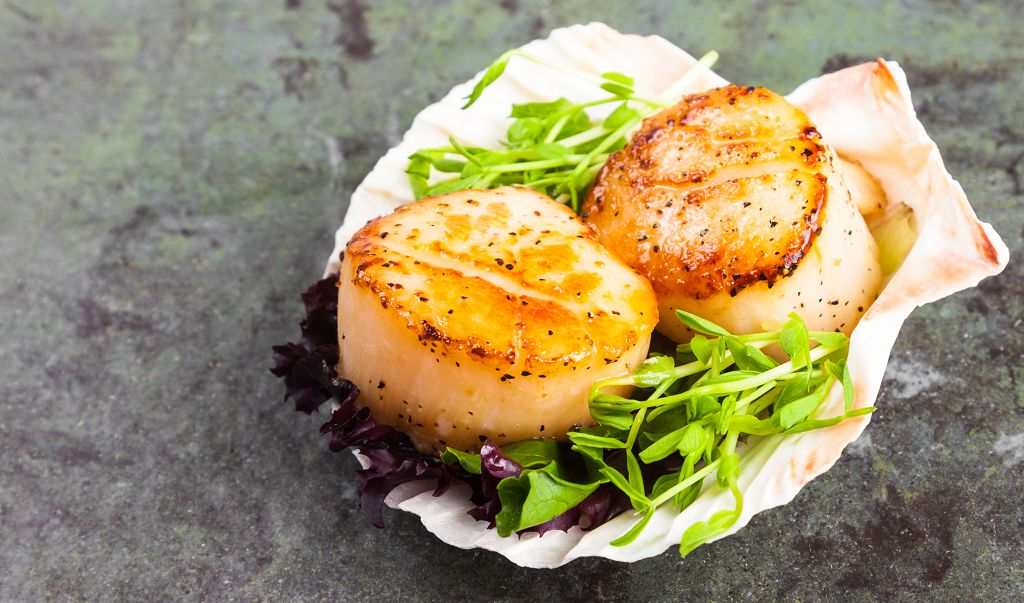 Grilled scallops and vegetables