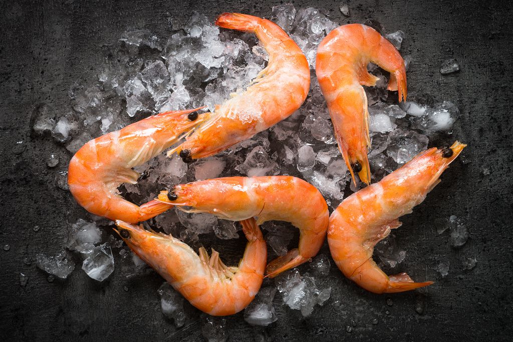 freeze cooked shrimp