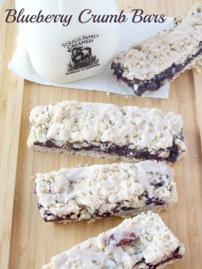 Blueberry Crumb Bars With Cinnamon Icing {Gluten Free}