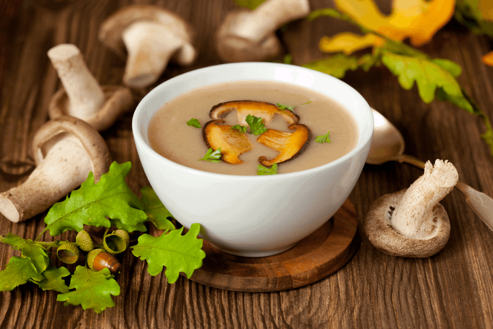 Vegan Mushroom Soup | How To Preparing the vegan mushroom soup
