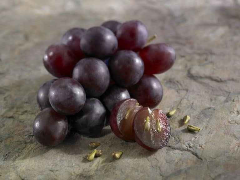 Grape Seeds and Grape on the table