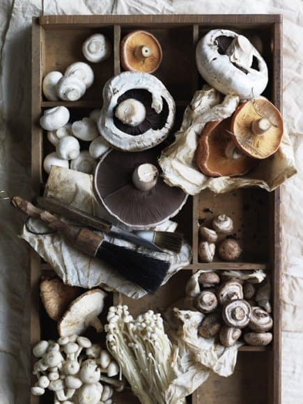 Dried Mushrooms and a knife on the tray